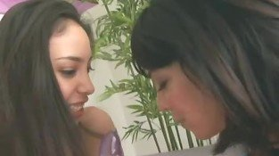 Two aroused lesbian brunettes play with sex toys